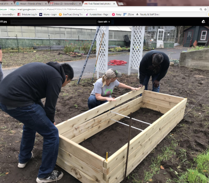 Raised bed 2